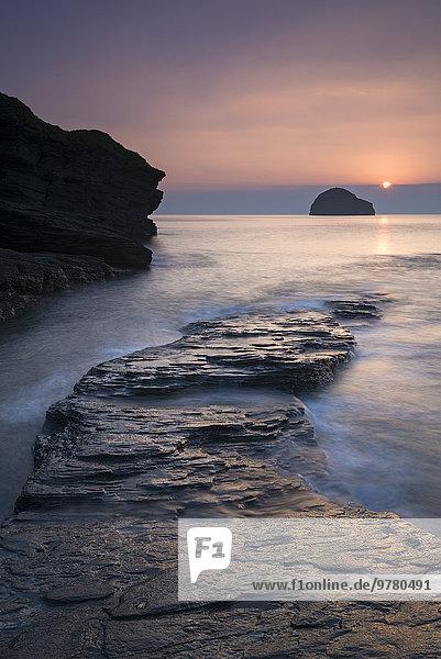 Felsbrocken Europa Sonnenuntergang Großbritannien über Möwe Cornwall England