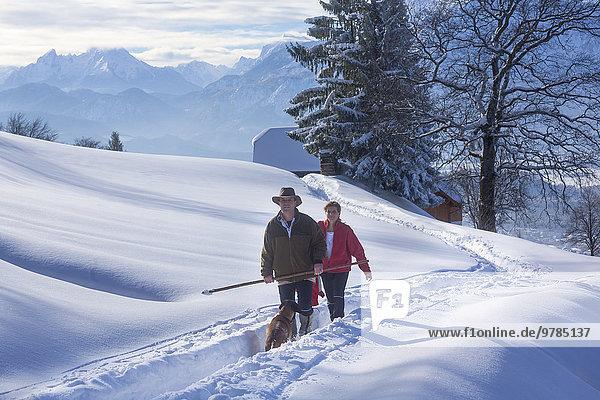 Paar wandert mit Hund  Gaisberg  Salzburger Land  Österreich  Europa