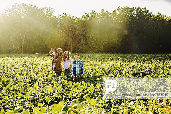 stehend Europäer Nutzpflanze Bauernhof Hof Höfe Feld