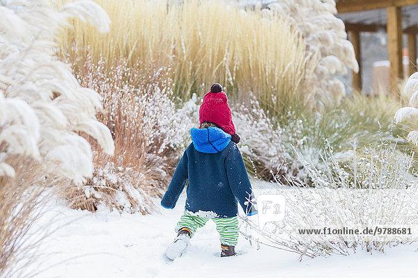 Europäer gehen Junge - Person Schnee Garten Baby