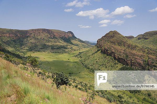 Landschaft mit Felsen und Gras im Marakele-Nationalpark  Waterberg Mountains  Limpopo-Provinz  Südafrika