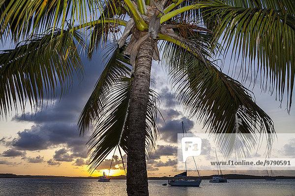 Sonnenuntergang in der Nonsuch Bay  Green Island  Antigua  Antigua und Barbuda  Nordamerika Sonnenuntergang in der Nonsuch Bay, Green Island, Antigua, Antigua und Barbuda, Nordamerika