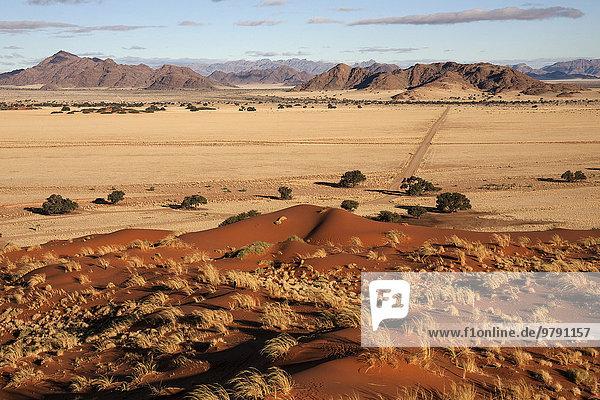 Elim-Düne  Ausblick auf Grassteppe und Kameldornbäume (Vachellia erioloba)  Sesriem-Camp und Tsarisberge  Namib-Wüste  Namib Naukluft Park  Namibia  Afrika