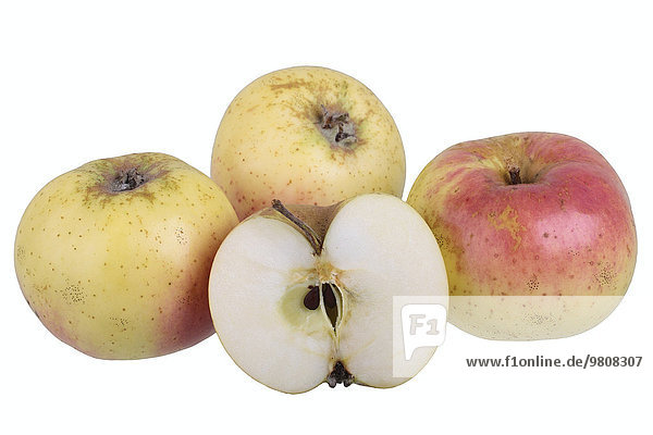 Apfelsorte Weilburger mit aufgeschnittenem Apfel