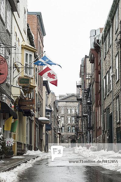 Altstadtstraße mit kanadischen und quebecischen Flaggen  Quebec City  Quebec  Kanada
