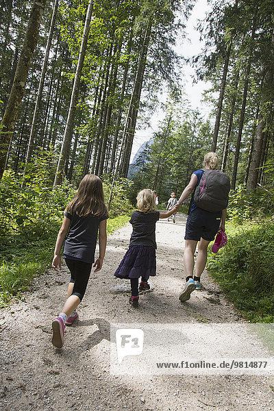 Rückansicht von Mutter und Kindern beim Wandern im Wald  Berchtesgaden  Obersalzberg  Bayern  Deutschland