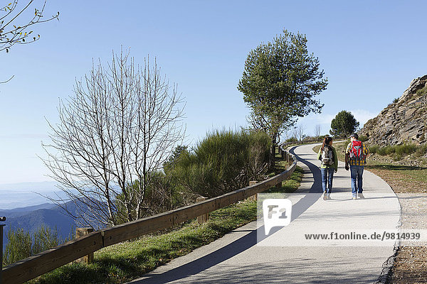 Wanderer auf dem Bürgersteig am Hang  Montseny  Barcelona  Katalonien  Spanien