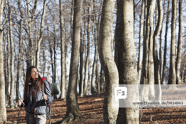 Wanderung durch den Wald  Montseny  Barcelona  Katalonien  Spanien