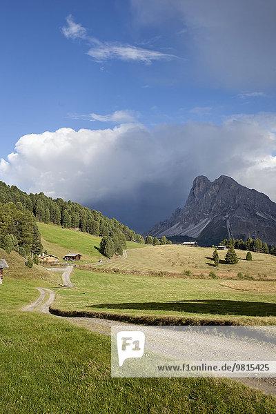 Schotterpiste und ferne Berge  Dolomiten  Plose  Südtirol  Italien