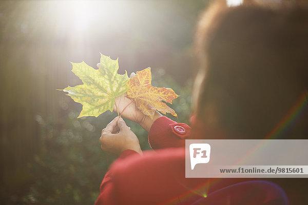 Frauenhände mit zwei Herbstblättern im sonnigen Park