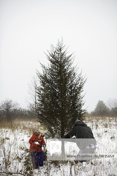 Father and daughter cutting down christmas tree