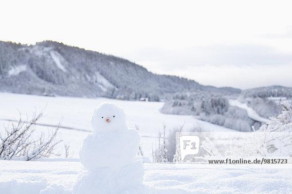 Schneemann in verschneiter Landschaft  Trondheim  Norwegen
