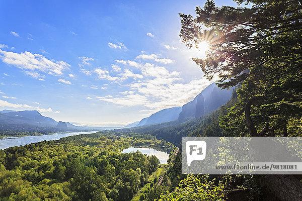 USA  Oregon  Columbia River Gorge  Multnomah County  Blick auf den Columbia River