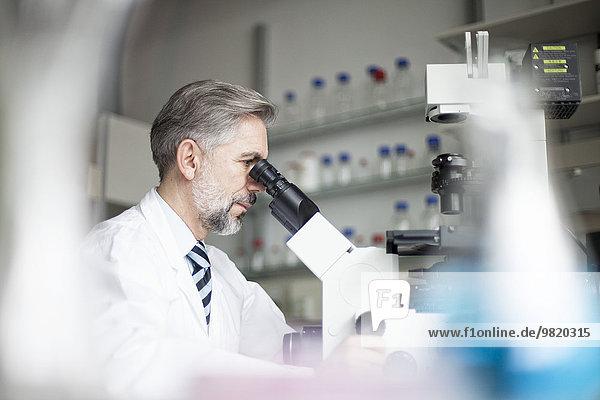Wissenschaftler im Labor beim Blick durchs Mikroskop