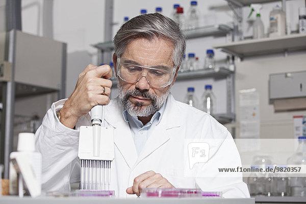 Wissenschaftler Pipettieren im Labor