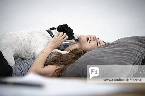 Junge Frau spielt mit Hund auf der Couch
