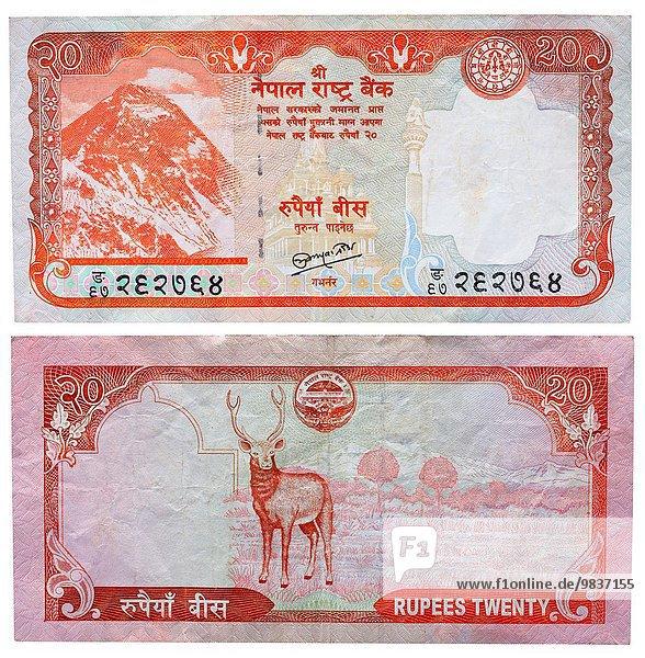 Berg Mount Everest Sagarmatha Hirsch Nepal