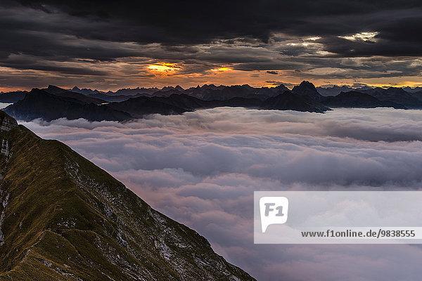 Gipfelgrat der Kanisfluh mit Nebelmeer bei Sonnenaufgang  Au  Bregenzerwald  Vorarlberg  Österreich  Europa
