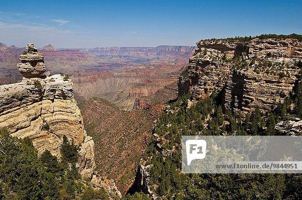 Felsbrocken Landschaftlich schön landschaftlich reizvoll Arizona Ansicht Grand Canyon Nationalpark vorwärts South Rim
