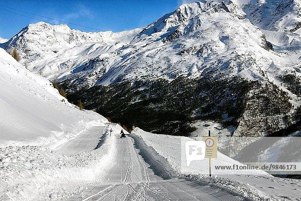5 rennen Schlitten Hintergrund Ansicht vorwärts Saas Fee Schweiz Weg