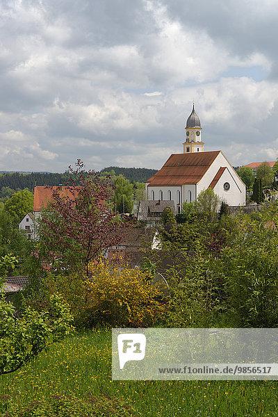 Stiftskirche St. Philipp und Jakob  Bad Grönenbach  Schwaben  Bayern  Deutschland  Europa