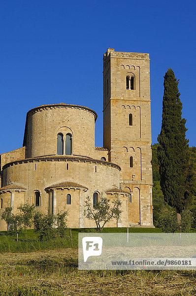 Abtei Sant'Antimo in der toskanischen Landschaft  Montalcino  Castelnuovo dell'Abate  Provinz Siena  Toskana  Italien  Europa