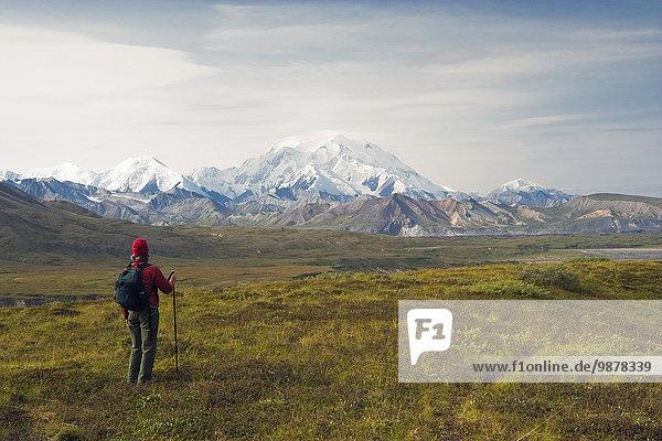 nahe Nationalpark wandern Ansicht Denali Nationalpark Mount McKinley Besucherzentrum