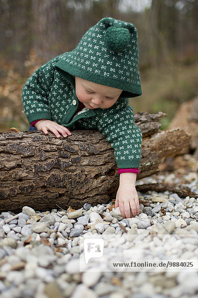 Baby girl leaning over tree trunk and touching pebbles