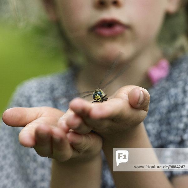 Mädchen mit Libelle auf Handfläche