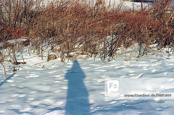 Photographers self portrait shadow in snow covered field