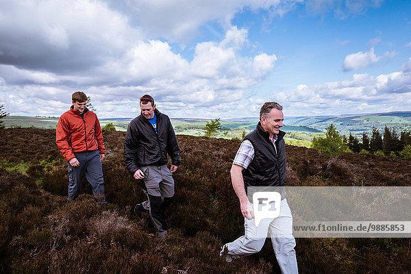 Männliche Freunde beim Wandern auf Heidemoor  Pateley Bridge  Nidderdale  Yorkshire Dales