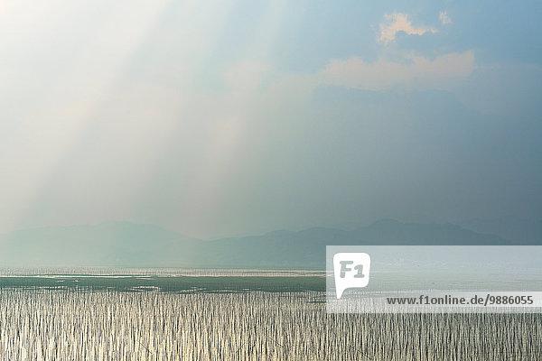 Seil Tau Strick hängen Netz angeln China Fujian