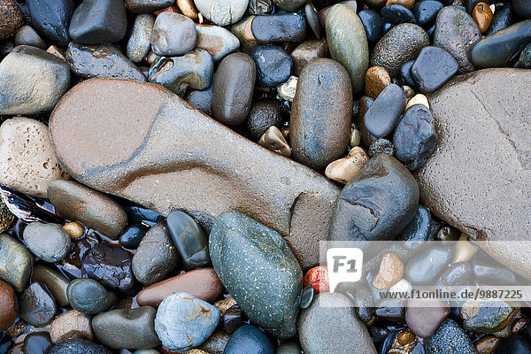 Stones on the beach; Lincoln City  Oregon  United States of America