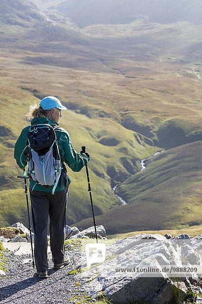 Felsbrocken folgen Tal Ignoranz Fluss wandern Wiese unterhalb County Galway Irland