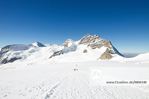 Blick auf Spuren in verschneiter Berglandschaft  Jungfrauchjoch  Grindelwald  Schweiz