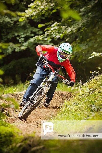 Junge Frau Downhill Mountainbike im Wald