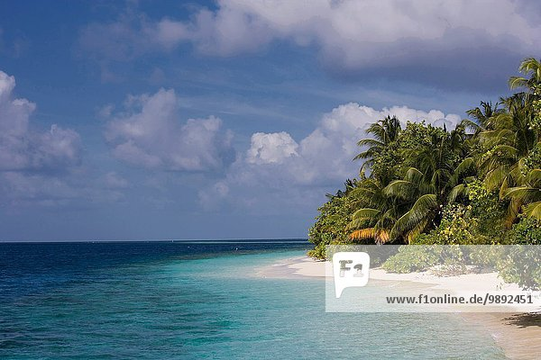 Empty beach on a tropical island  Vilamendhoo Island  Ari Atoll  Maldives