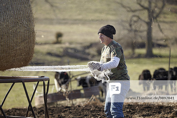 Reifer Landwirt  der das Netz aus dem Heuhaufen im Milchviehbetrieb entfernt.
