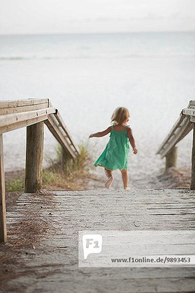 Rückansicht des weiblichen Kleinkindes bis zum Strand  Anna Maria Island  Florida  USA
