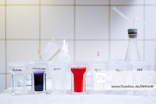 Histologische Untersuchung mit Färbebad