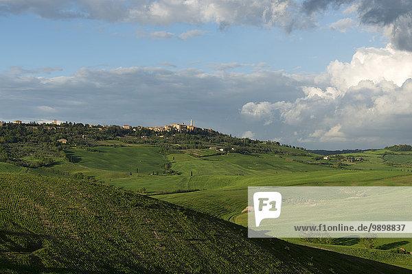 Italien  Toskana  Val d'Orcia  Pienza im Hintergrund der Hügellandschaft