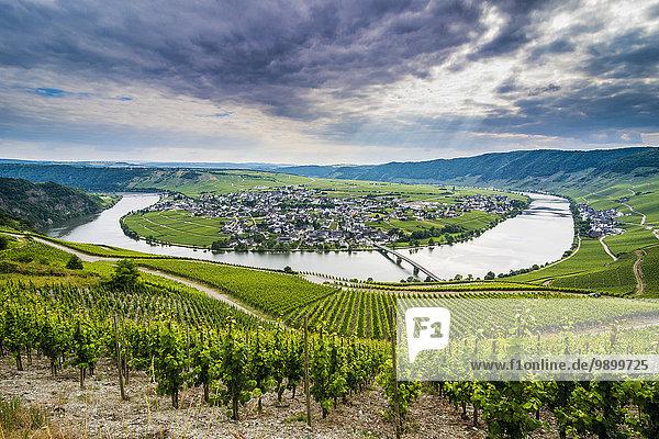 Deutschland  Rheinland-Pfalz  Moseltal  Flussbiegung bei Minheim Deutschland, Rheinland-Pfalz, Moseltal, Flussbiegung bei Minheim