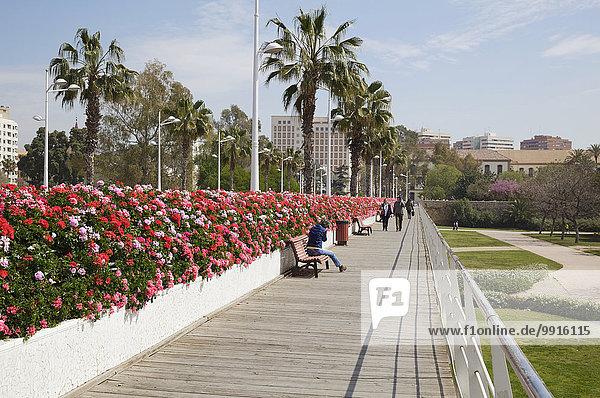Puente de las flores  Blumenbrücke  über den Park Jardin del Turia  Valencia  Spanien  Europa
