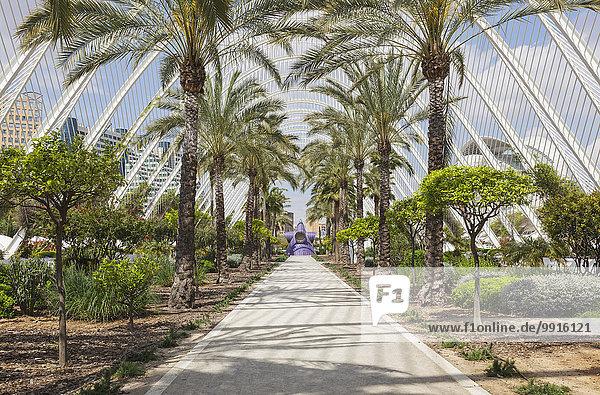 Die Stadt der Künste und Wissenschaften  L'Umbracle  Valencia  Spanien  Europa
