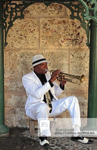 Kubanischer Trompeter spielt in einem kleinen Park  Havanna  Kuba  Nordamerika