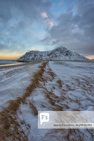 Landschaft im Frost  Lofoten  Norwegen  Europa