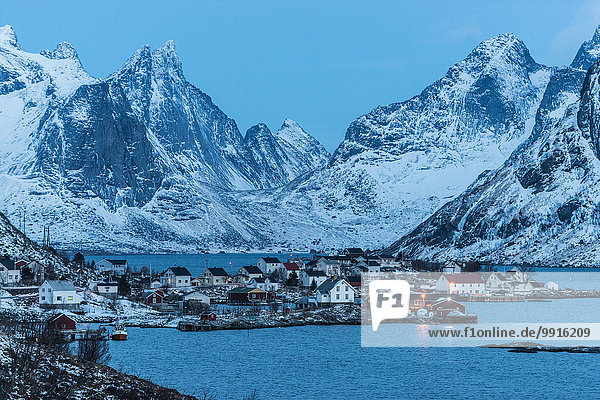 Fischerdorf zur blauen Stunde  Reine  Lofoten  Norwegen  Europa