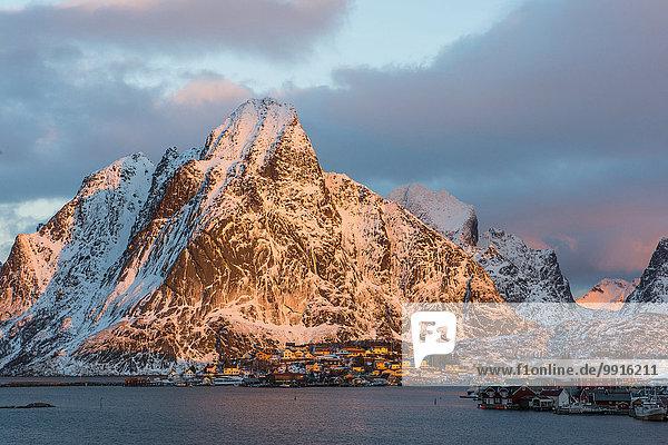 Fischerdorf im Morgenlicht  Reine  Lofoten  Norwegen  Europa