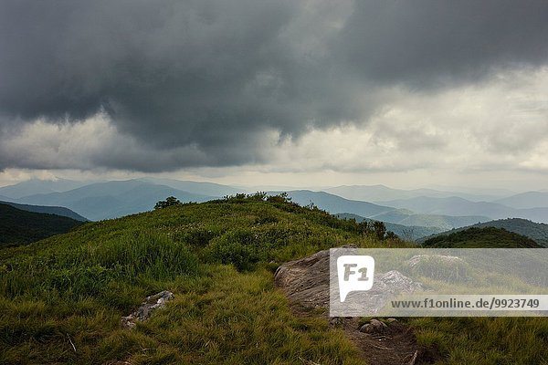 Pisgah National Forest  Great Balsam Mountains  North Carolina  USA