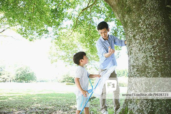 Fröhlichkeit Menschlicher Vater Sohn fangen Großstadt Insekt japanisch
